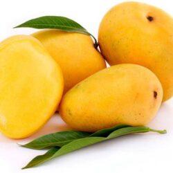 Alponsu mangoes