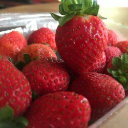 strawberries sri lanka